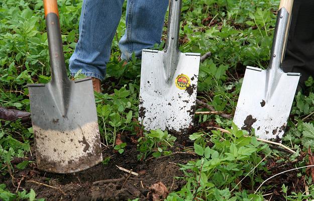 engrais-naturel-jardin-bio