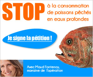 stop poissons