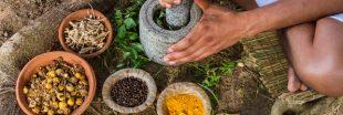 L'Ayurveda : le plus ancien système de 'santé préventive'