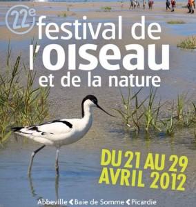 festival oiseau baie somme