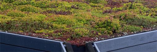 Communauté de l'habitat durable : un nouveau projet en images !