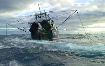chalut haute mer pêche