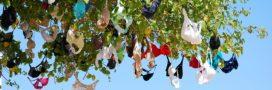Lingerie écolo: top 5 des marques bio et éthique