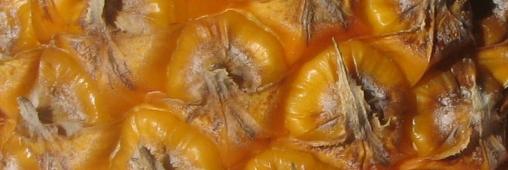 Ananas rôti au rhum et sucre roux