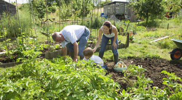 prêt de jardin