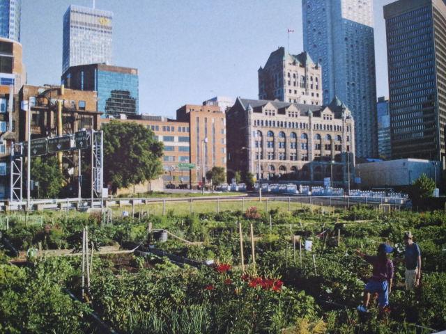 Le jardin urbain gagne les villes, ici à New York