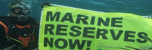 Bonne nouvelle, les réserves marines se multiplient