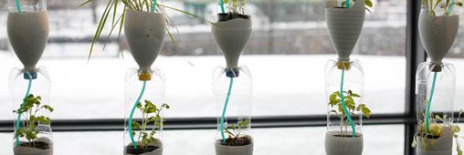 Cultiver ses légumes à l'intérieur avec une 'windowfarm'