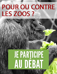 pour ou contre les zoos?