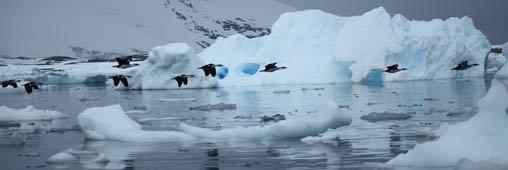 Un sous-marin solaire contre le réchauffement climatique