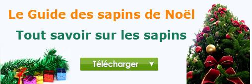 guide-sapin-noel-gratuit1.jpg