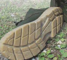 Une chaussure de marche en coquilles d 39 hu tres for Interieur huitre