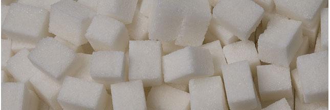Le xylitol est-il un bon substitut au sucre ?