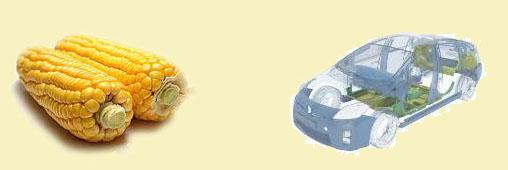 Une PME française produit du plastique avec des plantes
