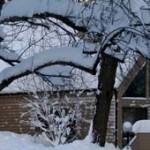 hiver-ban