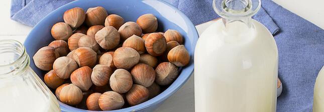 La recette du lait de noisettes, une boisson végétale riche et gourmande