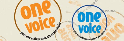 Tests sur les animaux : le label One Voice Bleu (partie 3)