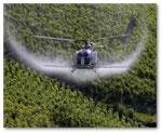 pesticides et alimentation