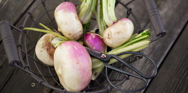 légumes pot-au-feu