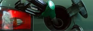 Un nouveau biocarburant à base de poisson