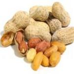 arachide-cacahuetes
