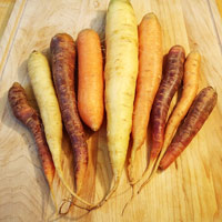 legume-inesthetique-carottes