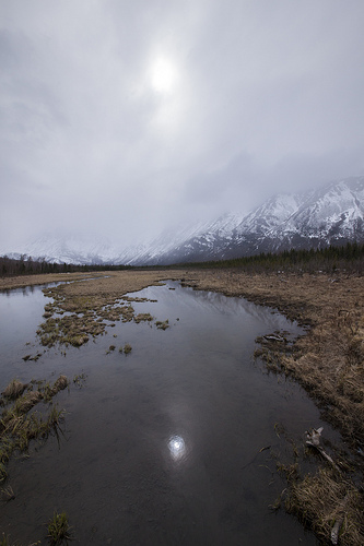 paysages-17-brouillard-eagle-river-nature-center-alaska_douglas-Brown