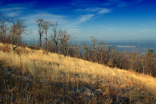 paysages-27-appalaches-carbon-county-pennsylvanie_nicholas-a-tonelli