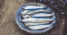La sardine, idéale pour faire le plein de vitamine D!