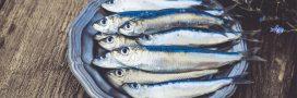 La sardine, idéale pour faire le plein de vitamine D !