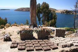 terre-crue-briques-adobe