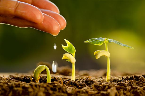l'agroecologie