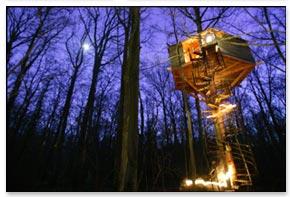 cabane-nature