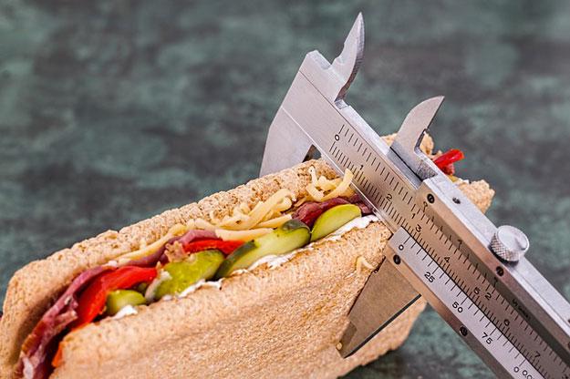 manger-gras-obesite