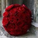 roses20
