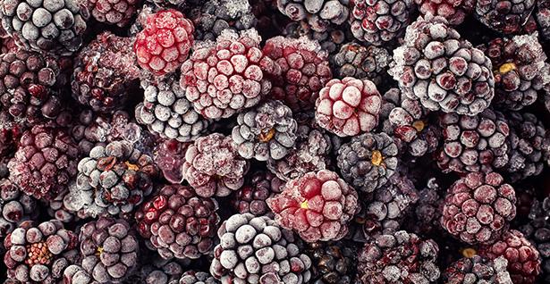 La dur e de conservation des aliments congel s - Temperature conseille de congelation des aliments ...