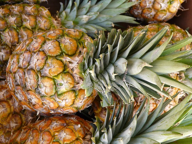 ananas-fruit