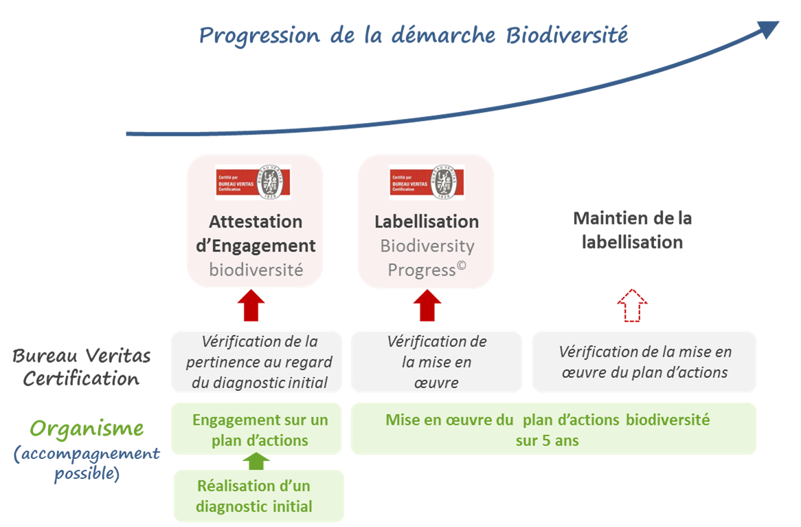 biodiversity-progress-01
