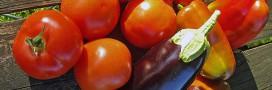 nettoyer légumes bicarbonate