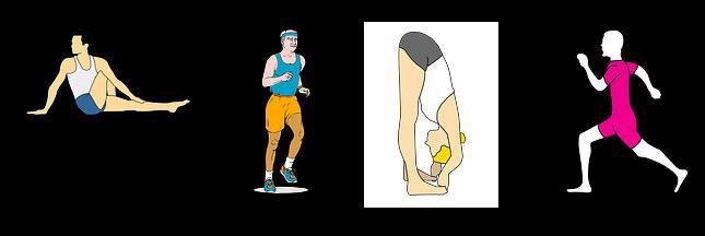 Endurance : la biologie du sport