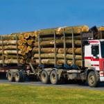 importation-bois-camion