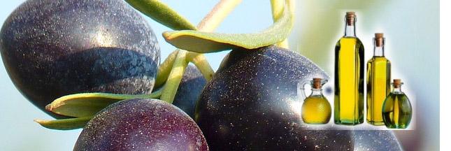 L'huile d'olive, la nouvelle arme des régimes ?!
