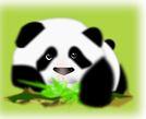 panda-pandathlon