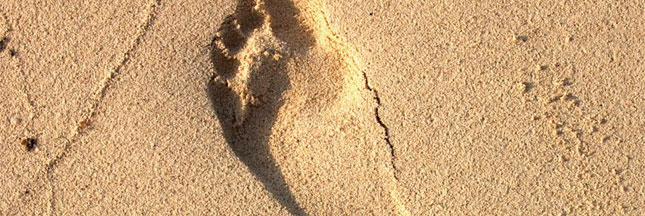 Fiche pratique : diminuer son empreinte écologique en vacances