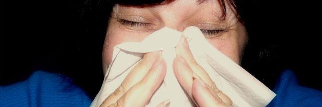 Combattre les allergies la maison 2 - Combattre humidite maison ...