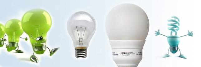 Les Conservateurs américains évitent les ampoules basse conso !