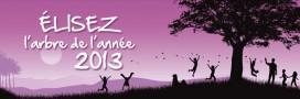 Le plus bel arbre de France 2013, le palmarès