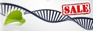 La cour suprême américaine refuse de breveter l'ADN