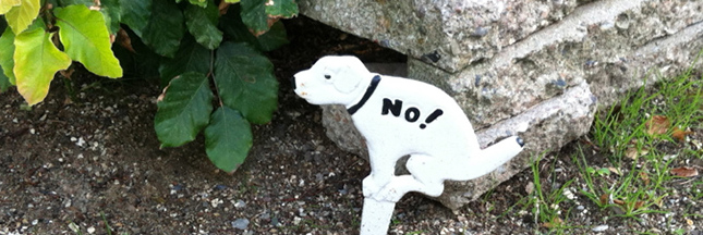 Crottes de chien - le village qui pratique le retour à l'envoyeur