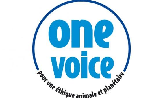 label-one-voice-bleu